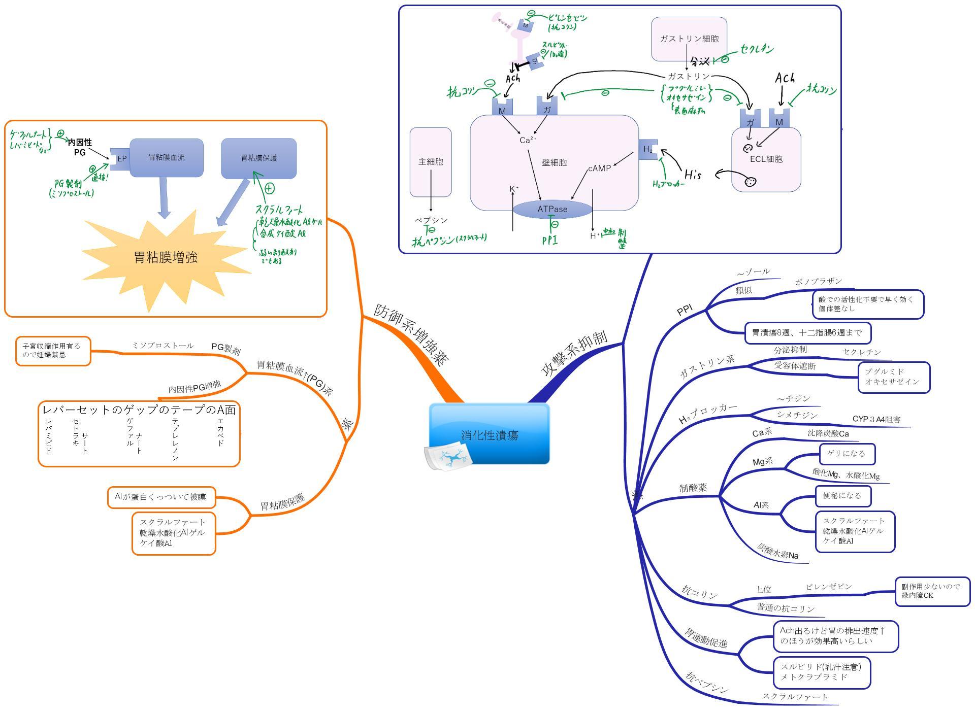 消化性潰瘍治療薬マインドマップ