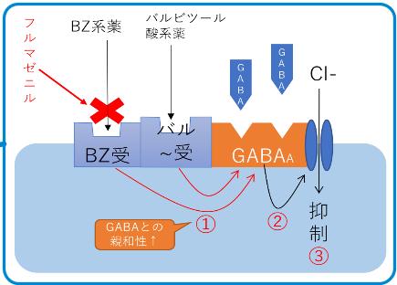 催眠薬機序 ベンゾジアゼピン バルビツール酸