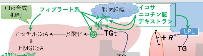 フィブラート系 トリグリセリド イコサペント酸エチル 作用機序