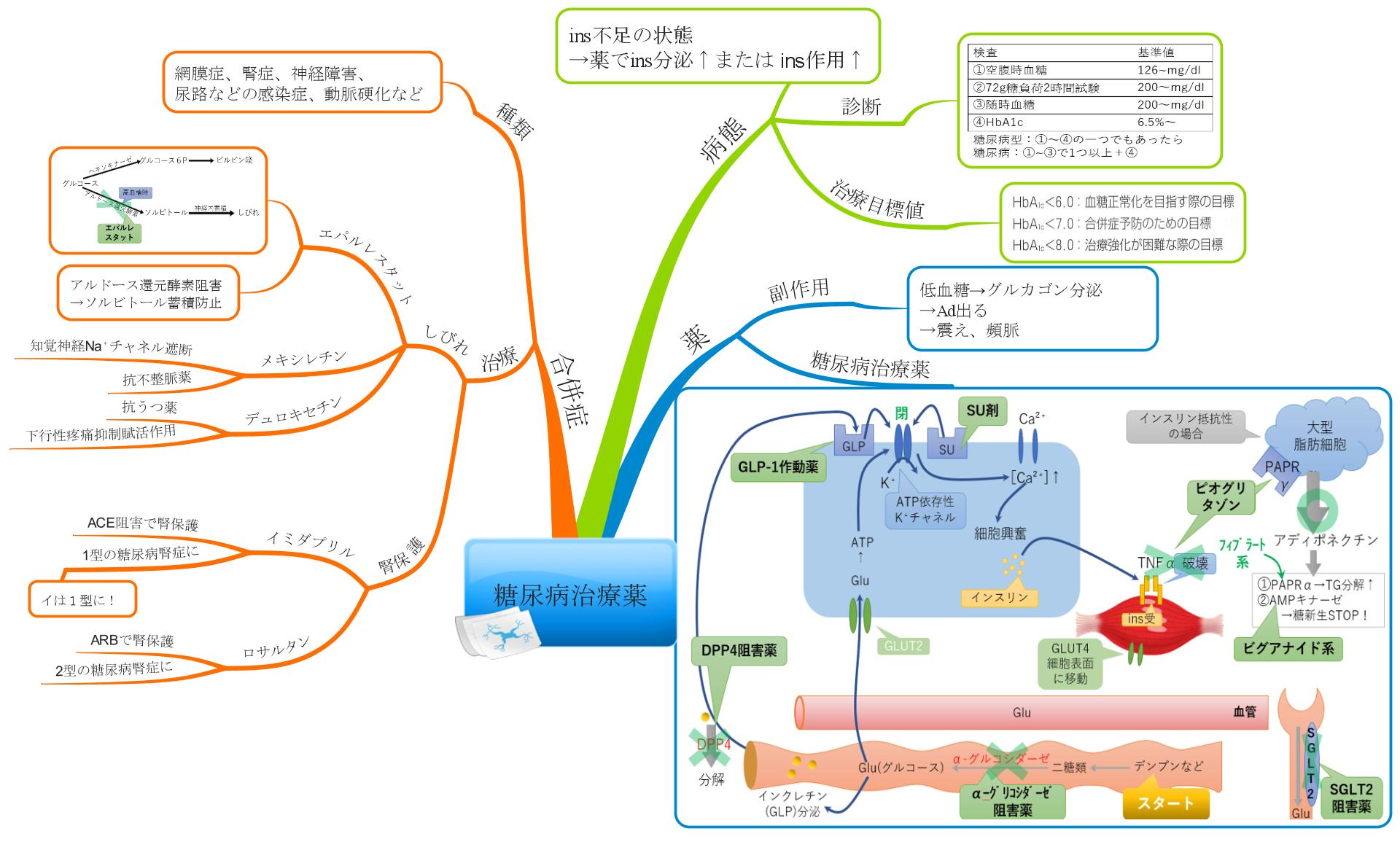糖尿病のマインドマップ