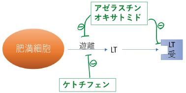 ケトチフェン ロイコトリエン遊離抑制作用 アゼラスチン オキサトミド  LT遊離抑制 LT受容体遮断作用 作用機序