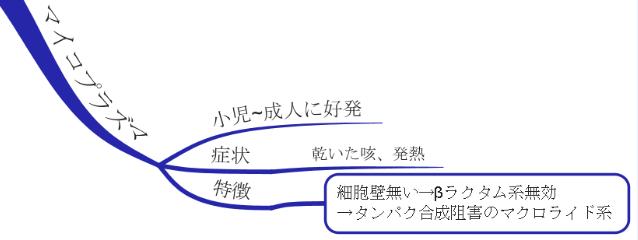 マイコプラズマ 図 マインドマップ 薬 治療 病態